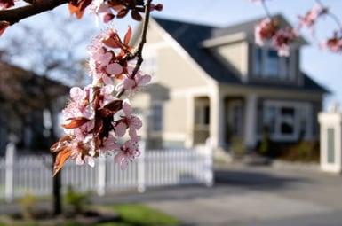 spring-home-345127-edited