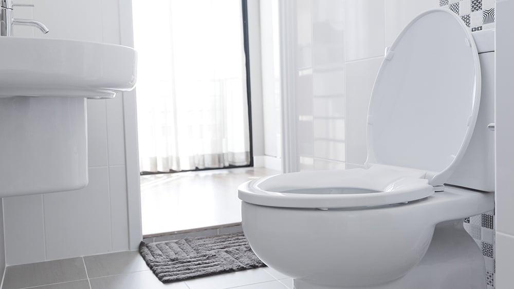 toilet-anatomy